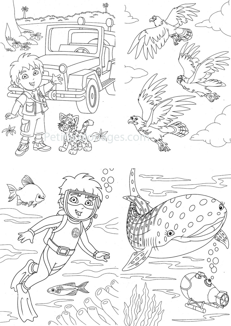 Petits coloriages Diego bébé, jaguar, plongée, poisson, baleine