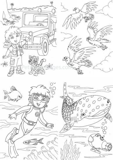 4 petits coloriages Diego : bébé, jaguar, plongée, poisson, baleine