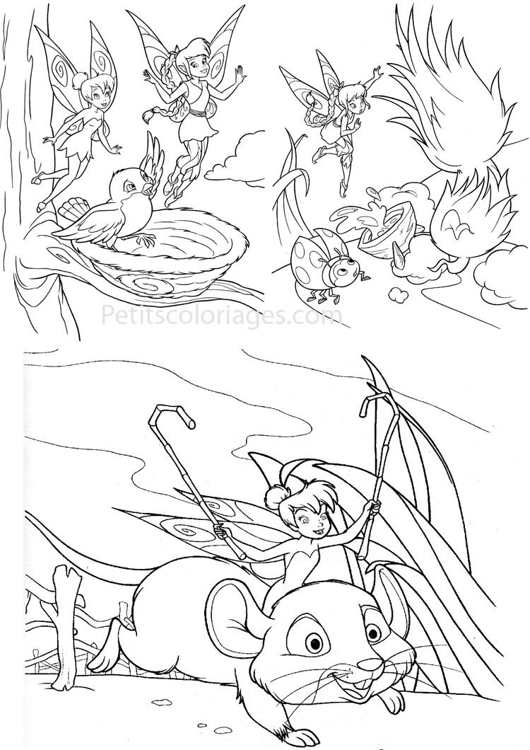 Petits coloriages Fée clochette fée, souris, nid, oiseau
