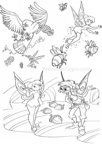 4 petits coloriages Fée clochette : gabble, aigle, bourdon, glands