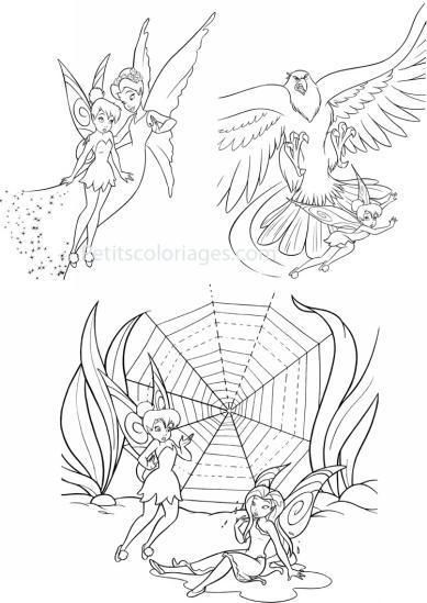 4 petits coloriages Fée clochette : rosélia, aigle, toile, fée
