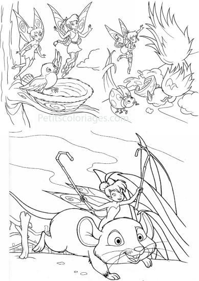 4 petits coloriages Fée clochette : fée, souris, nid, oiseau