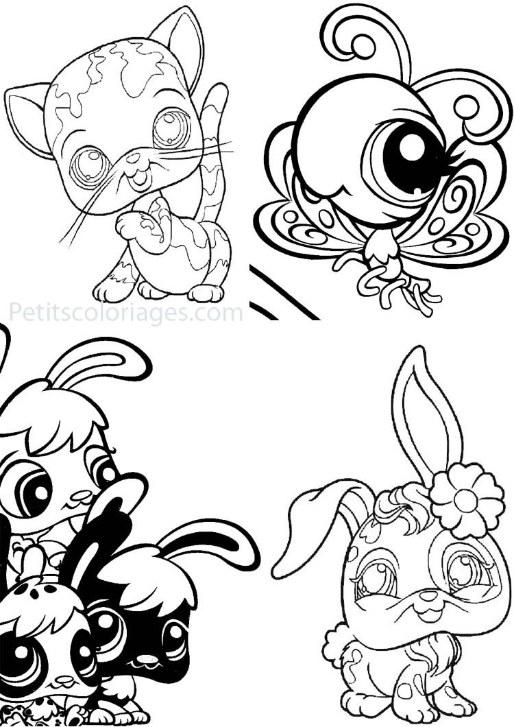 Petits coloriages petshop chat, lapin, papillon