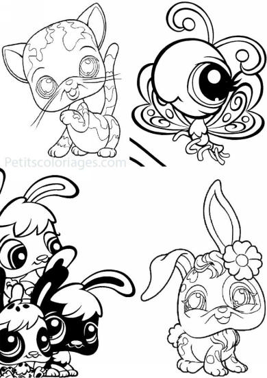 4 petits coloriages petshop : chat, lapin, papillon