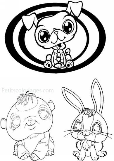 4 petits coloriages petshop : paresseux, panda, lapin, chien